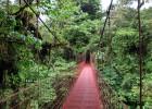 Monteverde Cloud Forest Reserve bridge