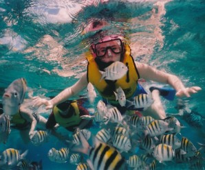 Cozumel reef-snorkeling